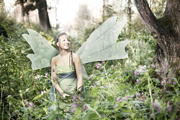 Fairy In Forest