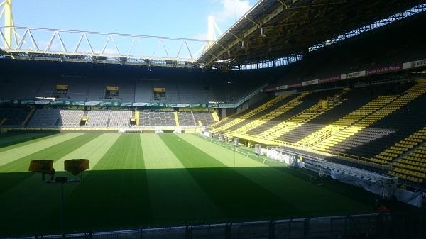 Borussia Dortmund Pitch
