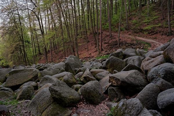 Felsenmeer Odenwald Forest
