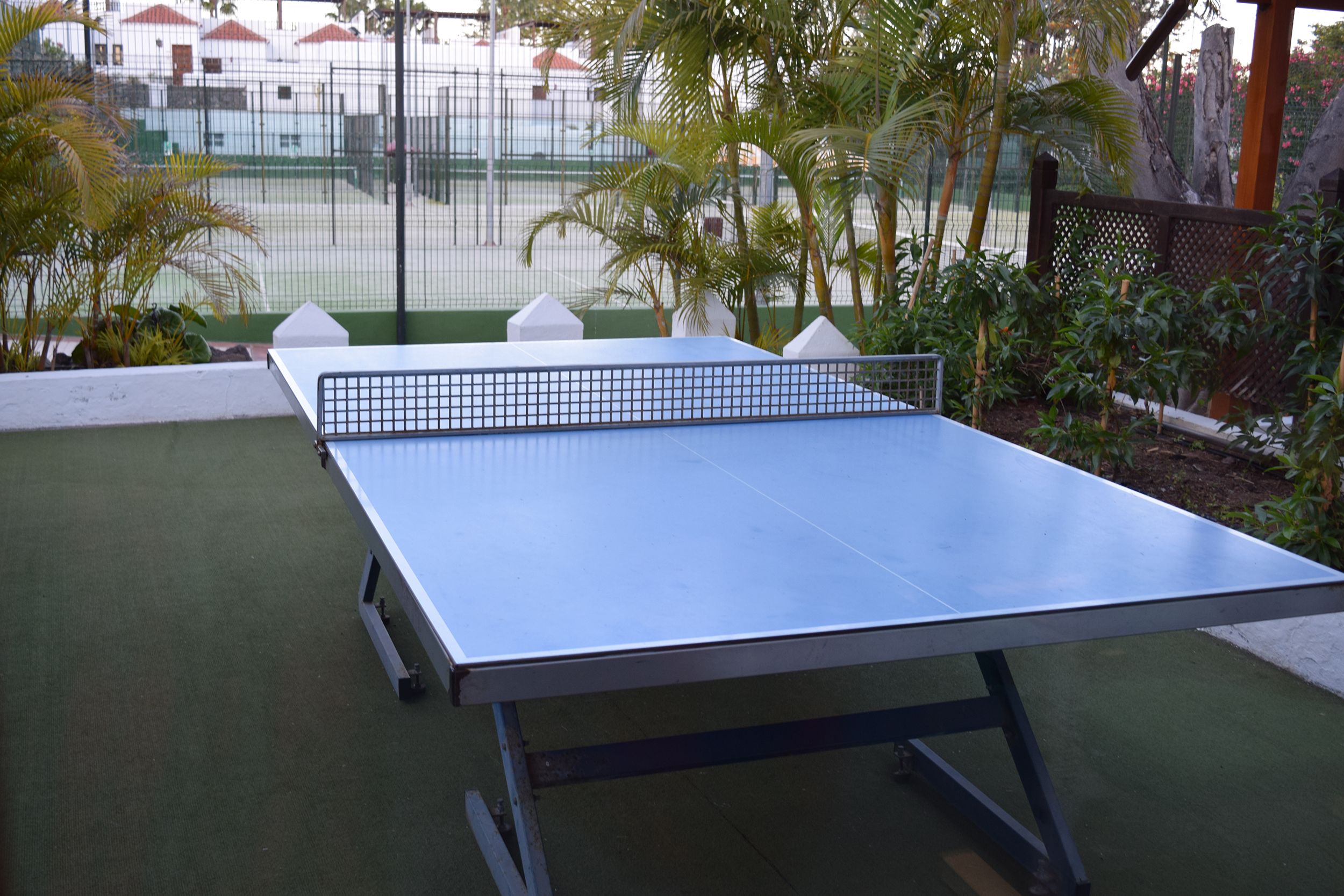 Table tennis La Gomera