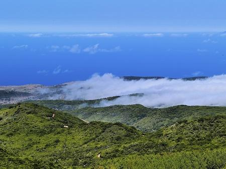 Mount Garajonay La Gomera