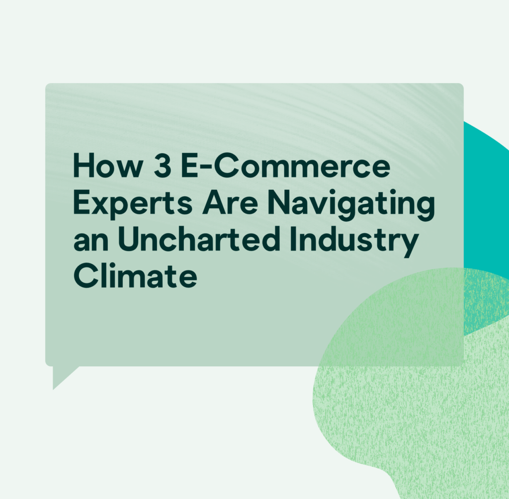 e-commerce experts navigating industry climate