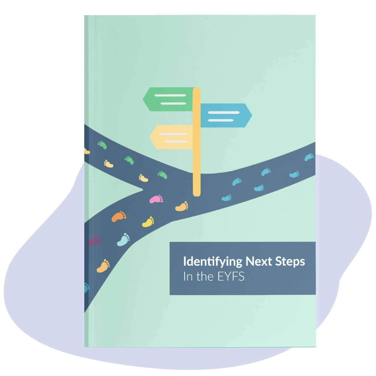 Identifying Next Steps in the EYFS