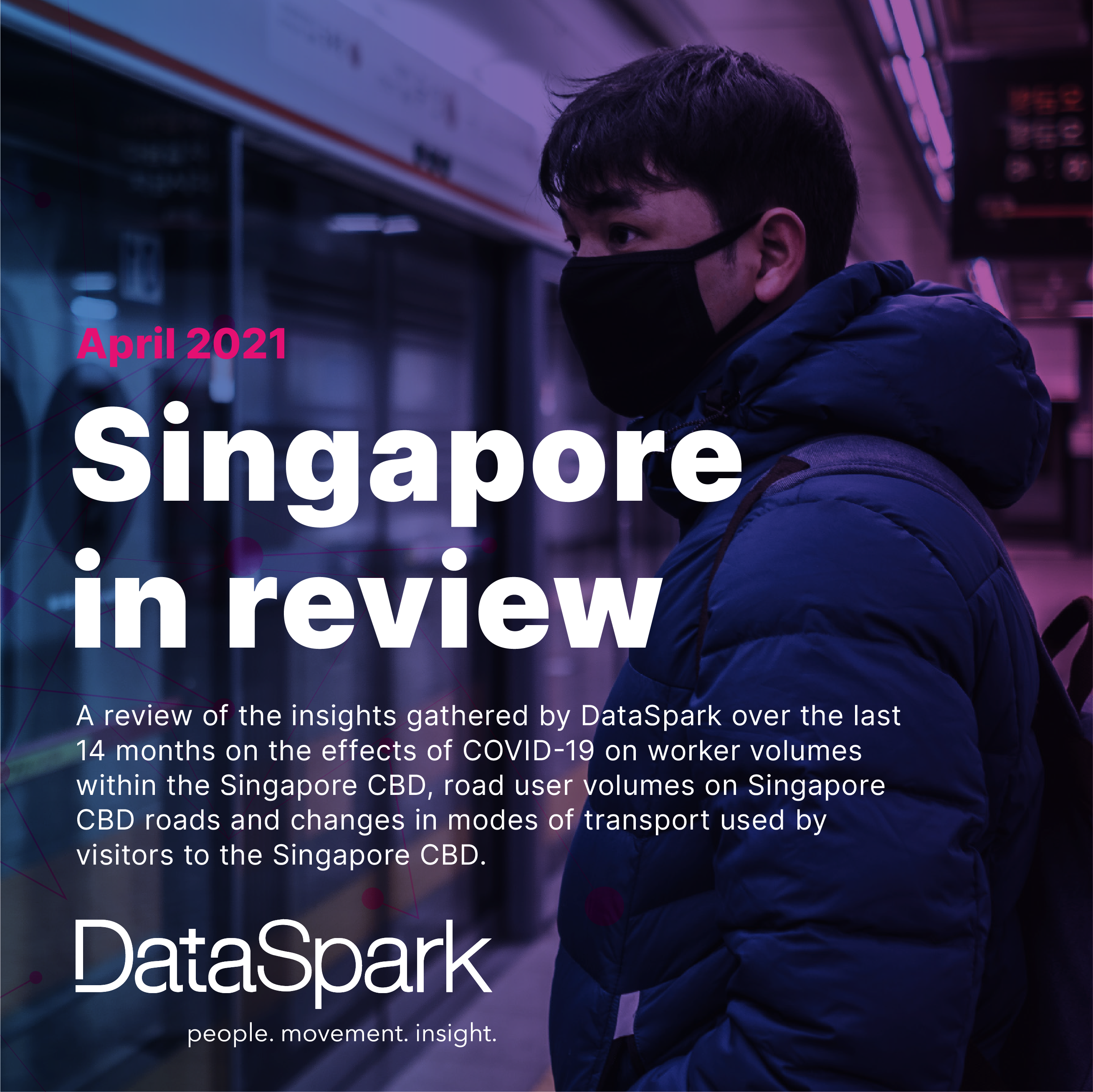 DataSpark Singapore in review report thumbnail
