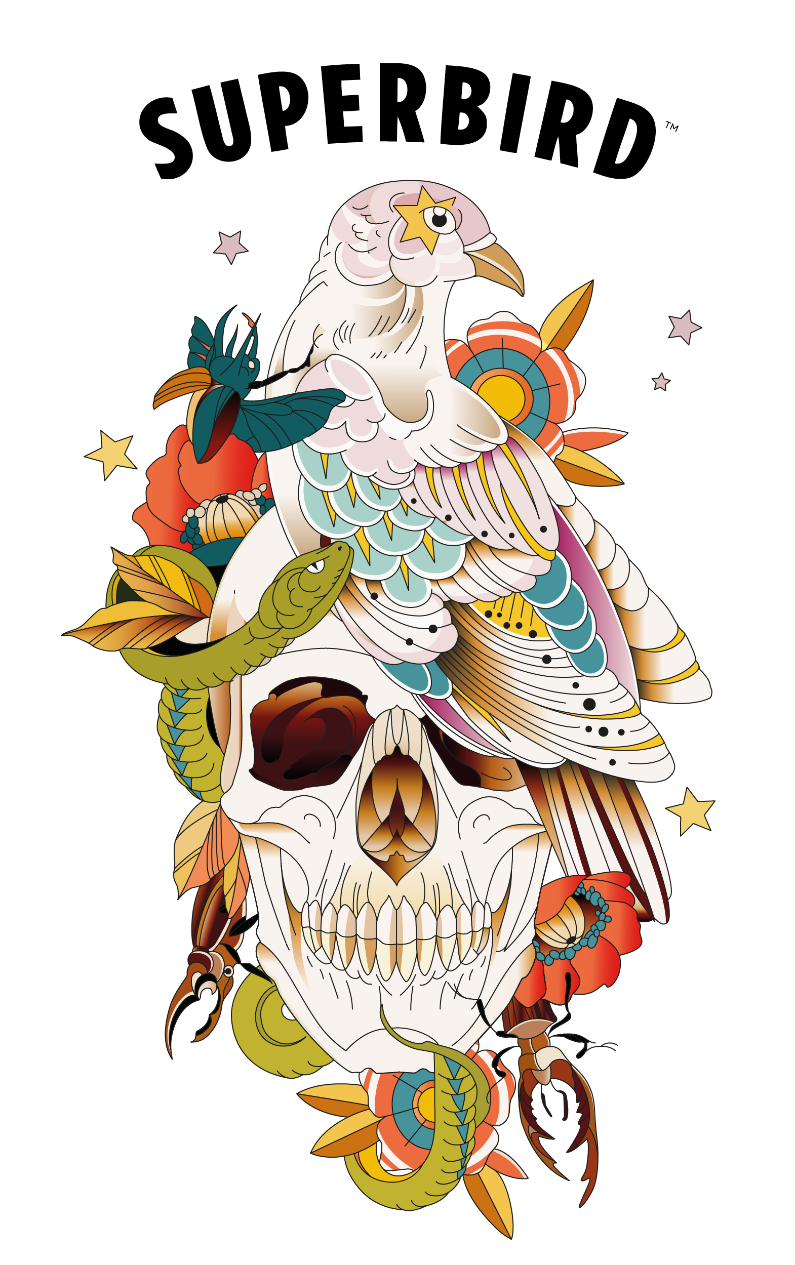Superbird logo over an illustration of a dove sitting on a skull with a snake, flowers, and beetles surrounding it.