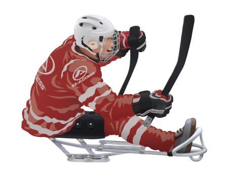 sled hockey player