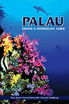 Palau Diving and Snorkeling Guide