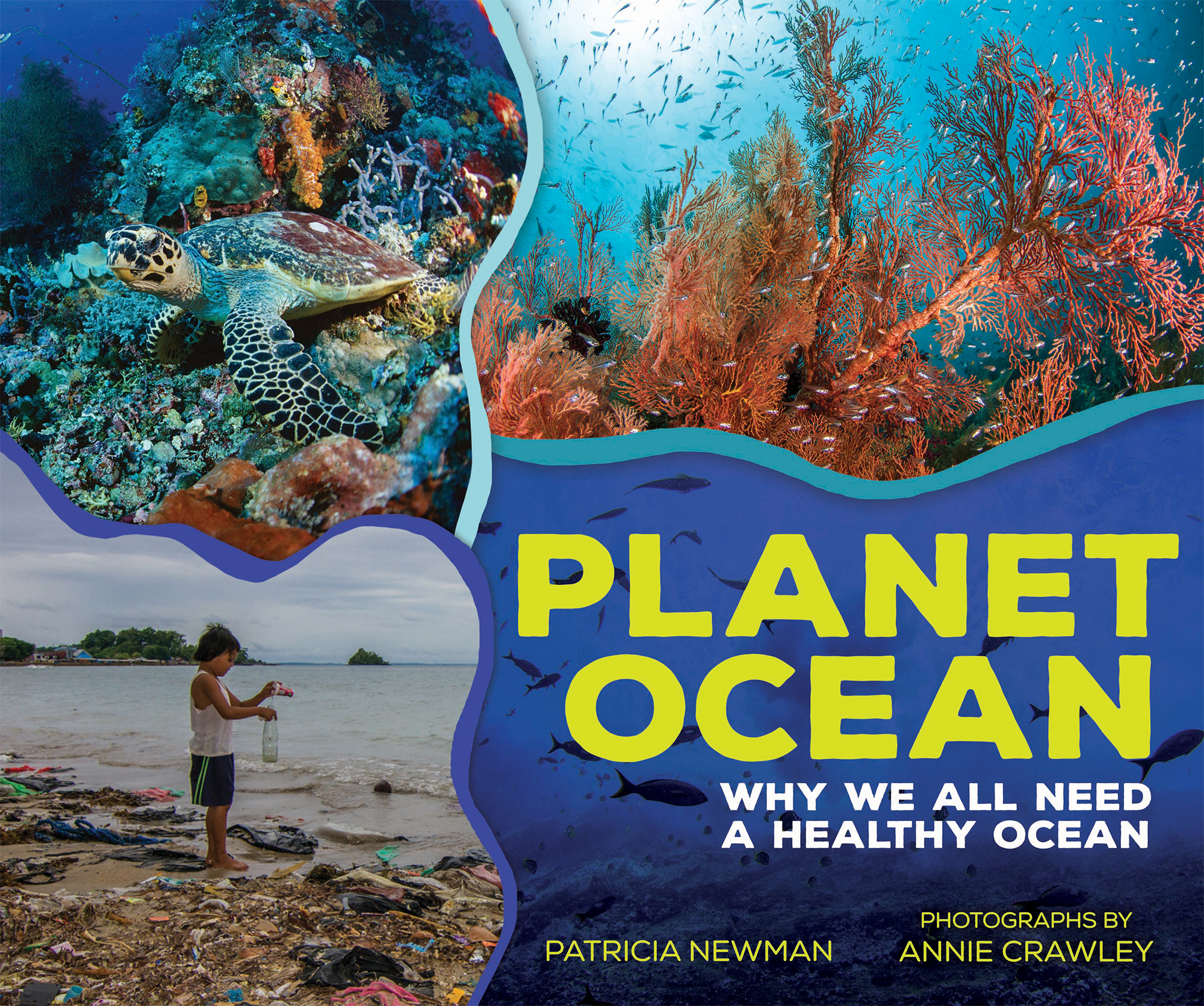 Planet Ocean: Why We All Need A Healthy Ocean