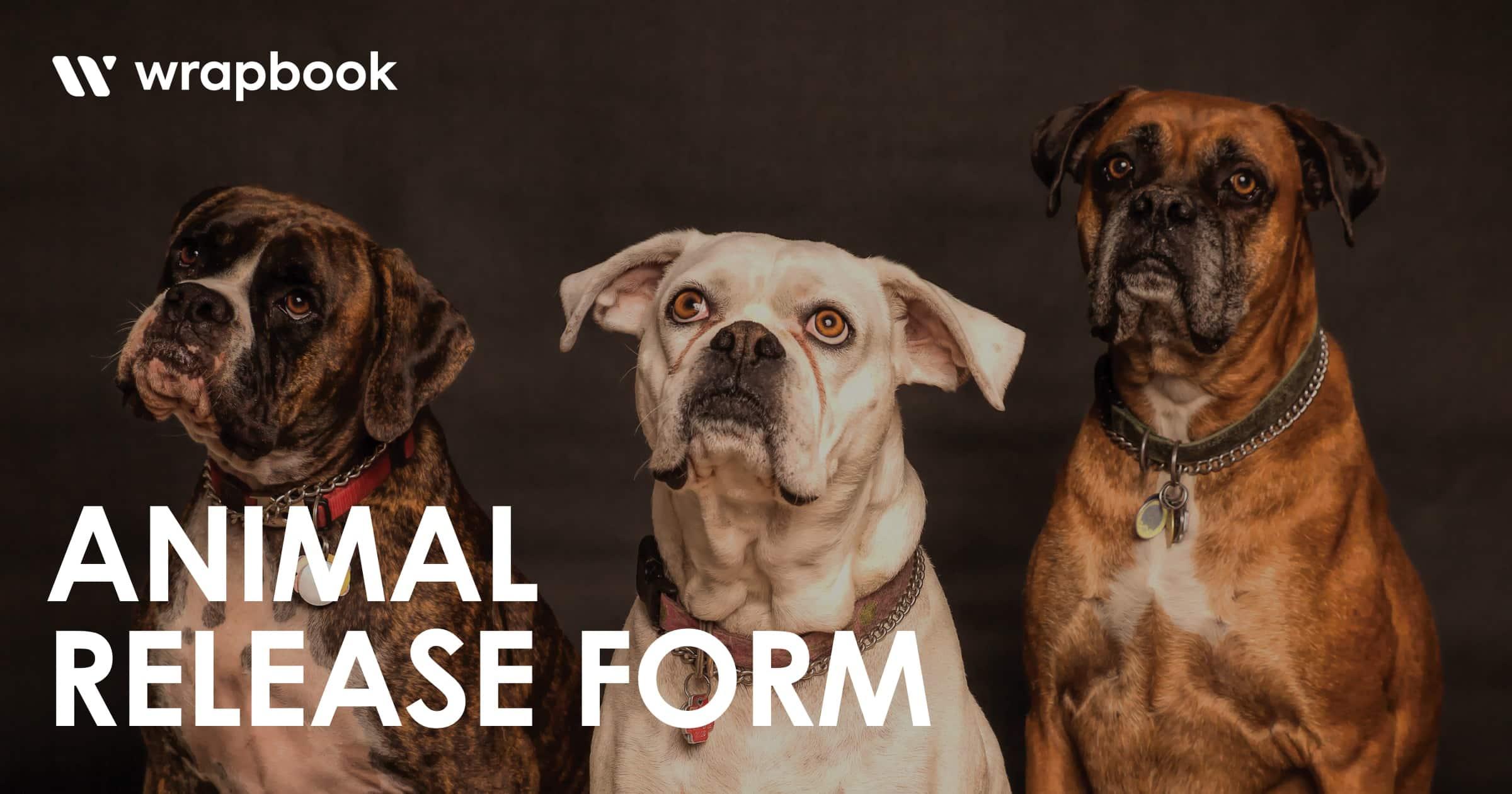 Model Release Form - Animal Release Form - Wrapbook