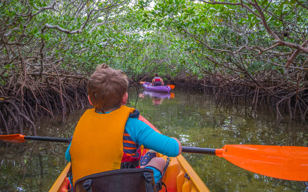 Kayaking in the Florida Keys