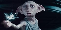 10 Things I learned from Cancer & Dobby the House Elf