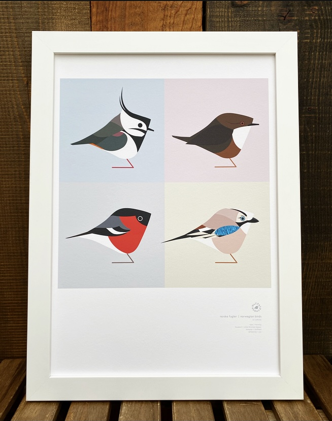 Norwegian Birds Print By MuffatPrague