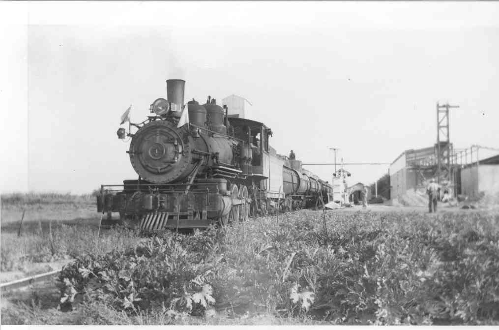 Train at Franzia Winery