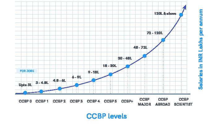 CCBP 4.0 Professional Levels  | NxtWave