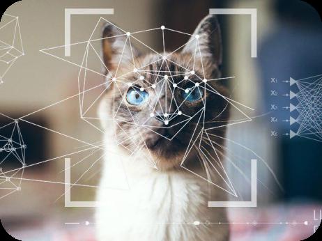 Нейронная сеть, которая умеет распознавать изображения