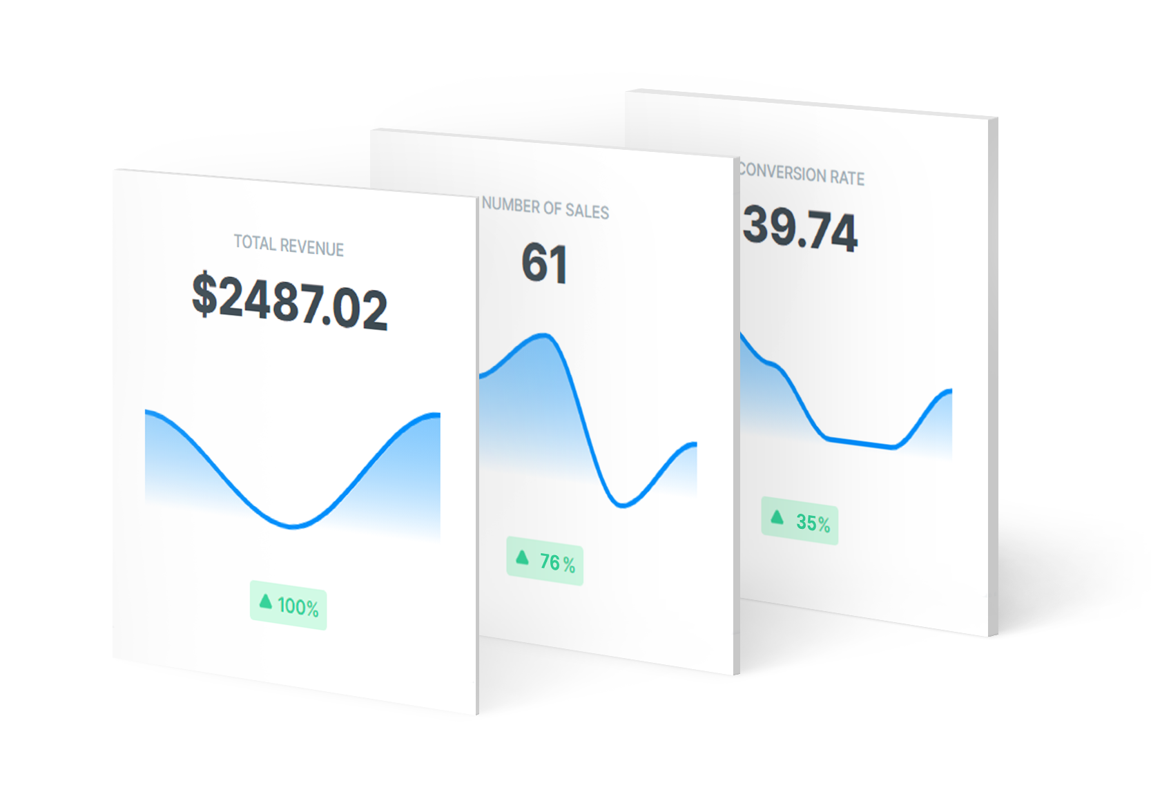 Custom checkout with advanced analytics and in-depth customer insights for merchant and online shop & store owners.