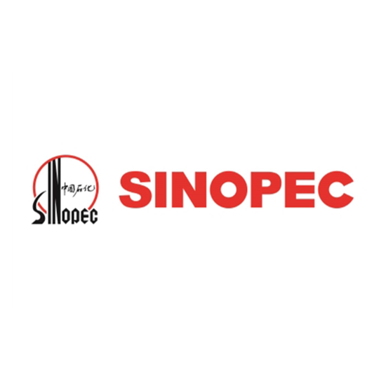 China Petroleum and Chemical Corporation - Sinopec