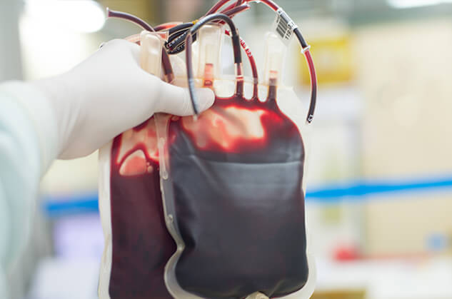A gloved hand holding two full bags of blood.