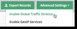 Global Traffic Director