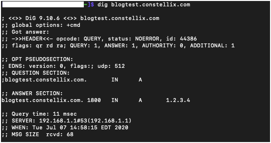 Example picture of a dig command and DNS lookup