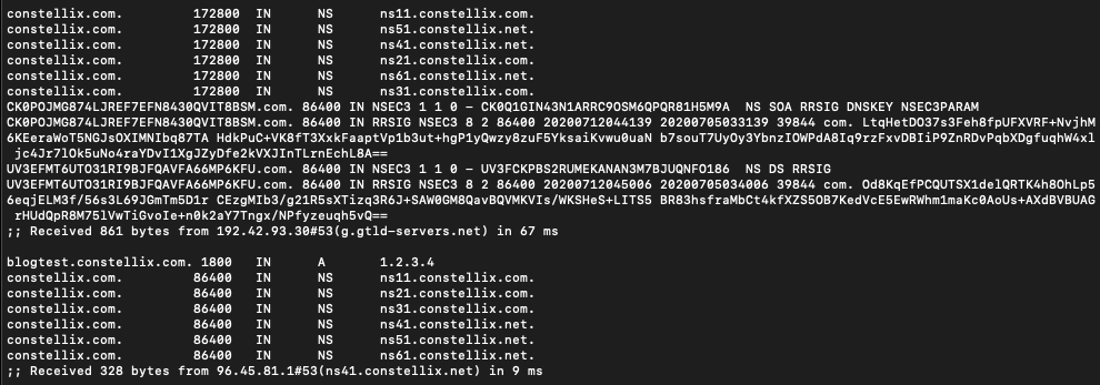 DNS lookup using dig command
