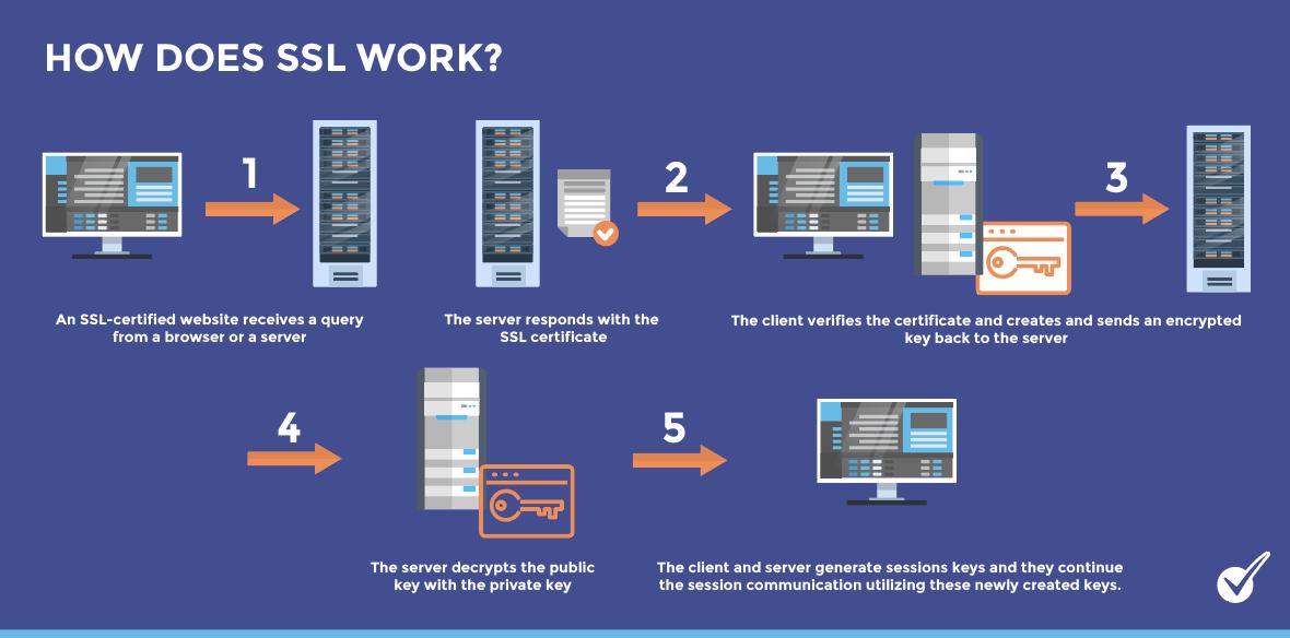how does SSL work? SSL certificate (digital handshake)