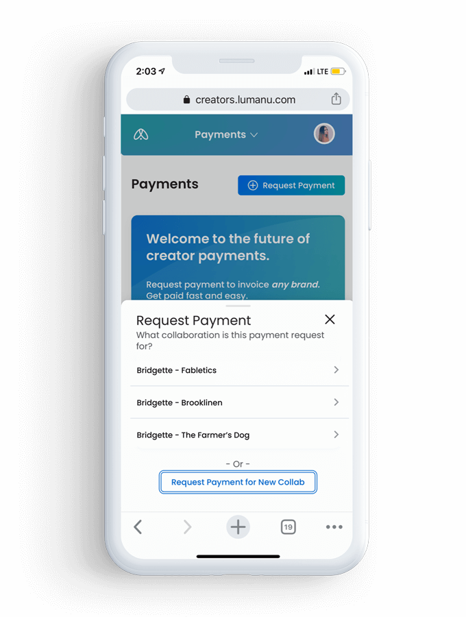 iPhone simple payment tool