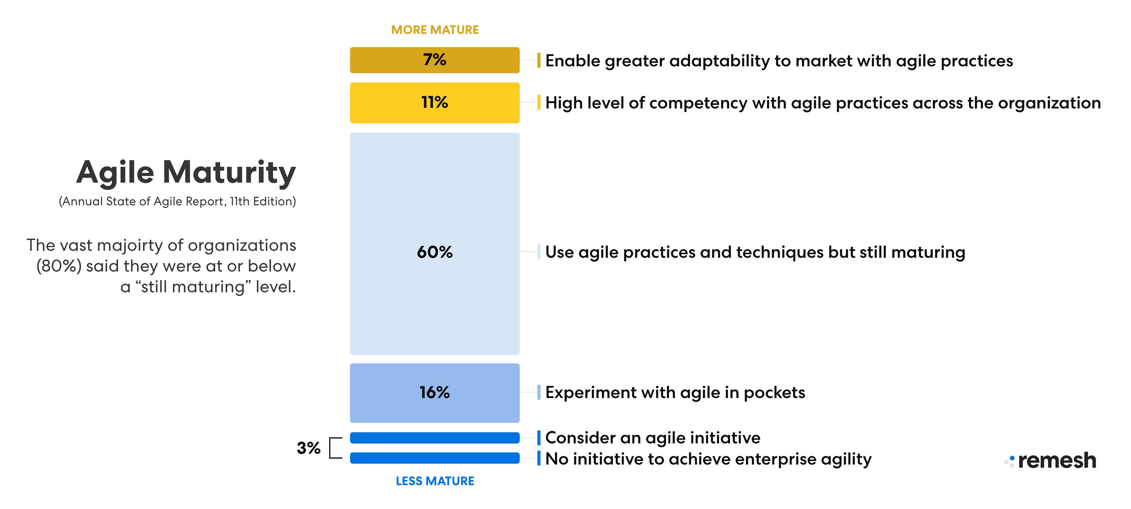 Agile Maturity graphic state of agile report