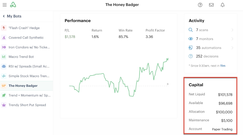 Bot dashboard highlighting bot's capital information