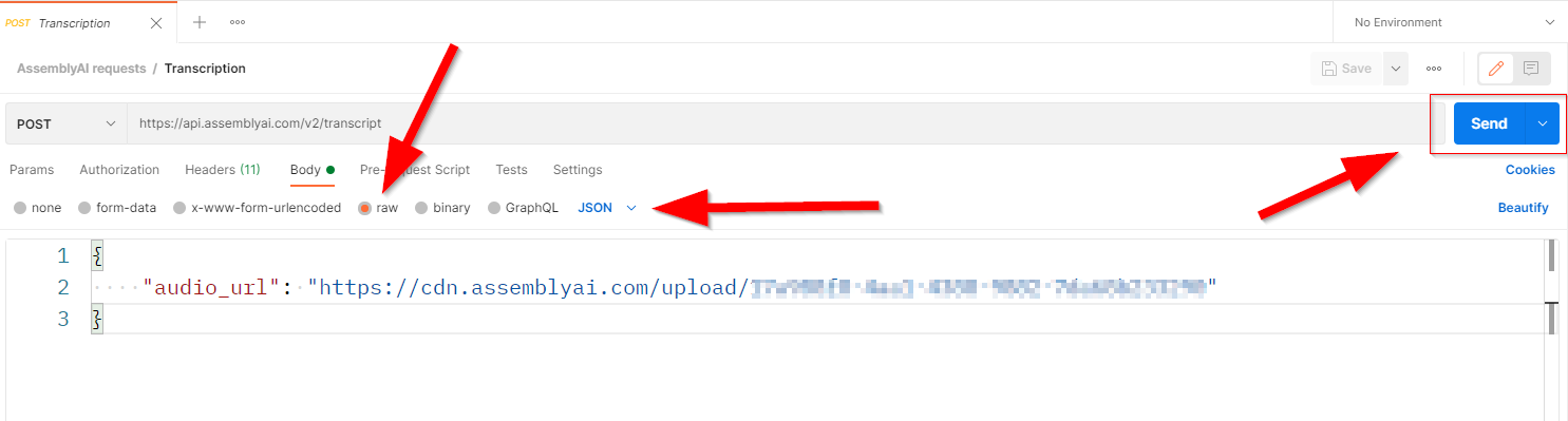 Screenshot showing transcription request body. Highlighting 'raw', 'JSON' and the send button