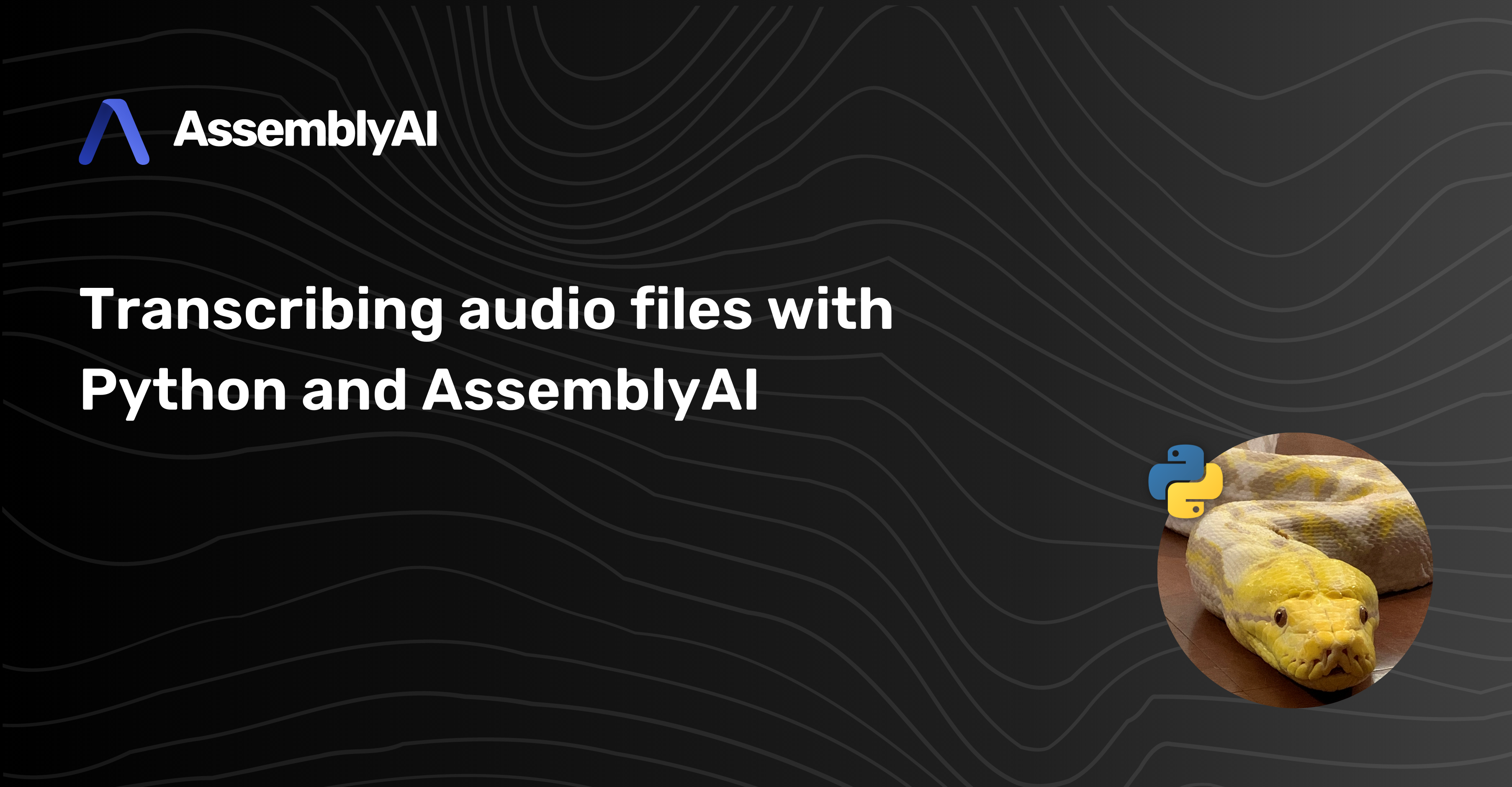 How to transcribe an audio file with Python and AssemblyAI