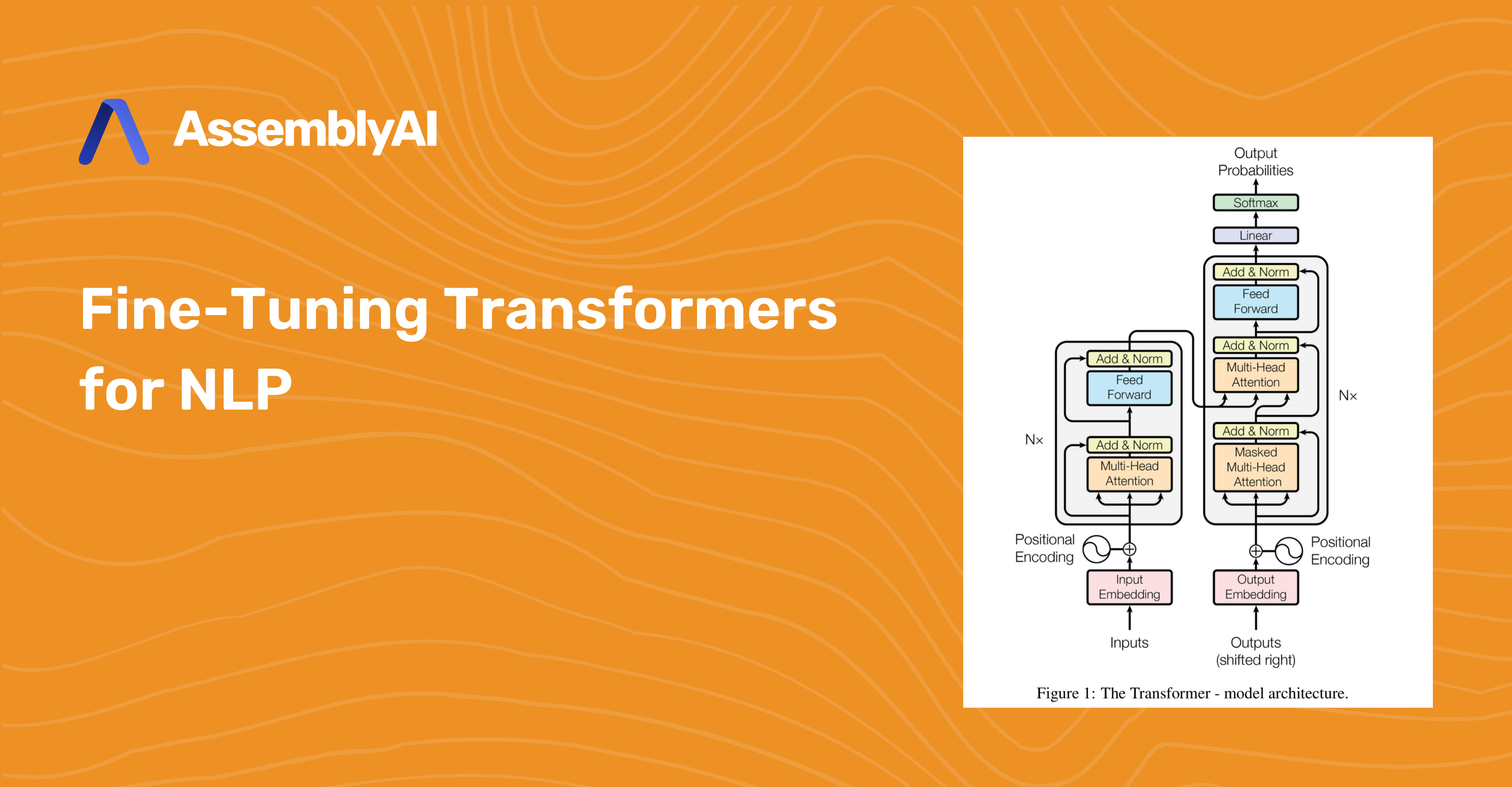 Fine-Tuning Transformers for NLP