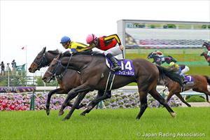 Fierement (JPN) arrives to win the 2020 Grade 1 Tenno Sho (Spring) in the final stride, picture Japan Racing Association