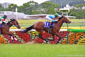 Lauda Sion (JPN) and Micro Demuro winning at Tokyo on Sunday, picture Japan Racing Association