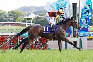 Gran Alegria winning the Grade I Yasuda Kinen at Tokyo, picture Japan Racing Association