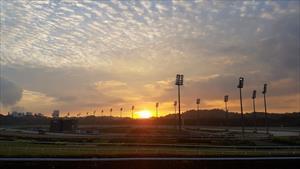 Racing to resume at Kranji, picture ThoroughbredNEWS