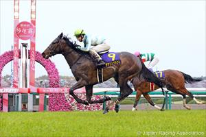 Daring Tact winning the Oka Sho at Hanshin, picture Japan Racing Association