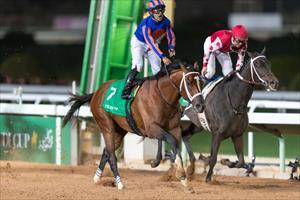Luis Saez celebrates on Maximum Security, picture Jockey Club of Saudi Arabia