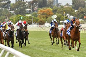 Nature Strip and James McDonald leaving the rest of the field behind at Flemington, picture Quentinjlang.com