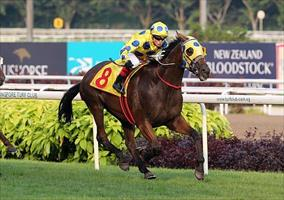 Craig Williams and Mr Clint winning the Group 1 Singapore Gold Cup, picture Singapore Turf Club