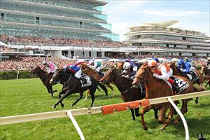 Vow And Declare  and Craig Williams (orange and White) win the 2019 Group 1 Melbourne Cup at Flemington, picture Quentinjlang.com