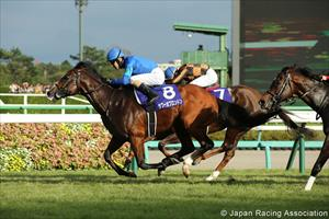 Tower Of London (JPN) and Christophe Lemaire, picture Japan Racing Association