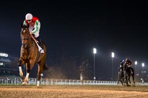 Picture caption – North America, picture Dubai Racing Club/Erika Rasmussen