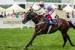 Advertise and Frankie Dettori winning the Group 1 Commonwealth Cup (1200m) at Royal Ascot, picture Liesl King
