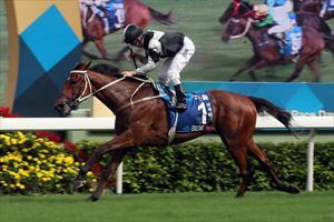 Exultant and Zac Purton winning at Sha Tin on Sunday, picture Hong Kong Jockey Club