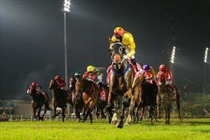 Southern Legend and Zac Purton easing down at the line at Kranji, picture Hong Kong Jockey Club