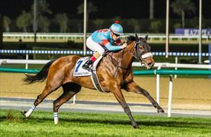 Almond Eye (JPN) winning the 2019 Group 1 Dubai World Cup at Meydan, picture Liesl King