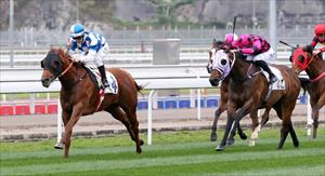 Nordic Warrior and Matthew Chadwick win the Hong Kong Jockey Club Trophy in style, picture the Hong Kong Jockey Club