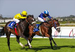 Do It Again and Soqrat battle to the line, picture Liesl King