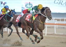 Triple Nine, picture Korea Racing Authority